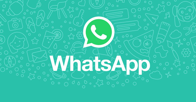 INCORPORALE A TU WEB EL CHAT DE WHATSAPP